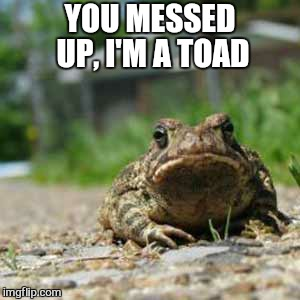 YOU MESSED UP, I'M A TOAD | made w/ Imgflip meme maker