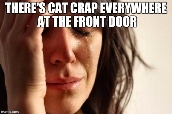 First World Problems Meme | THERE'S CAT CRAP EVERYWHERE AT THE FRONT DOOR | image tagged in memes,first world problems | made w/ Imgflip meme maker