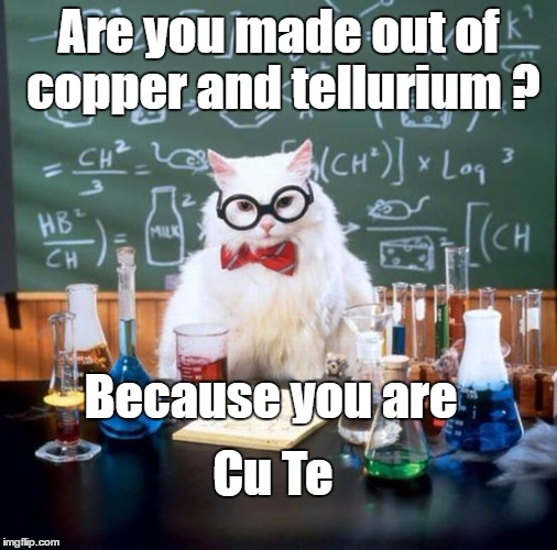 I feel there's real chemistry between us. | Are you made out of copper and tellurium ? Because you are Cu Te | image tagged in memes,chemistry cat,bad pun,funny,pickup lines,dank | made w/ Imgflip meme maker