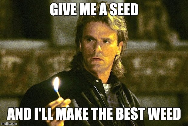 MacGyver | GIVE ME A SEED AND I'LL MAKE THE BEST WEED | image tagged in macgyver,memes | made w/ Imgflip meme maker