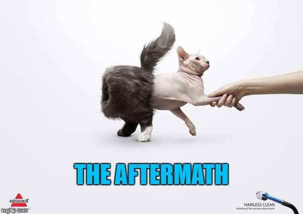 THE AFTERMATH | made w/ Imgflip meme maker