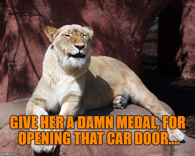 GIVE HER A DAMN MEDAL, FOR OPENING THAT CAR DOOR.... | made w/ Imgflip meme maker