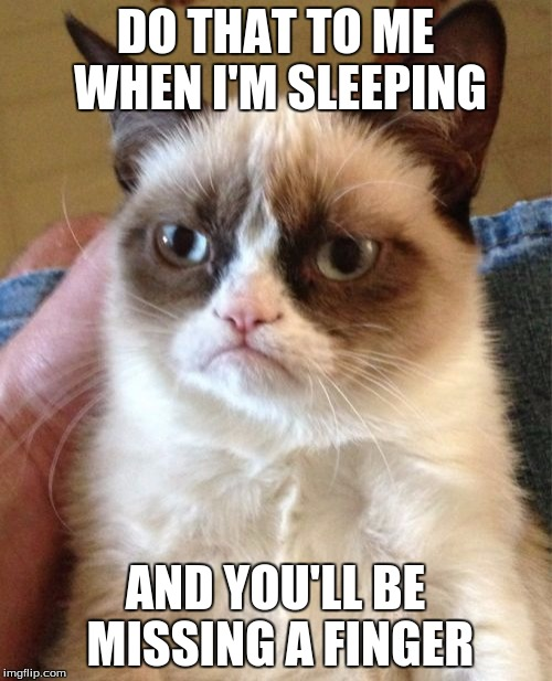 Grumpy Cat Meme | DO THAT TO ME WHEN I'M SLEEPING AND YOU'LL BE MISSING A FINGER | image tagged in memes,grumpy cat | made w/ Imgflip meme maker