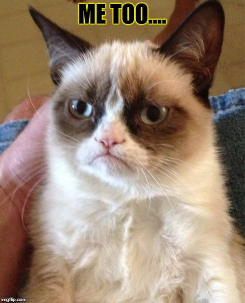 Grumpy Cat Meme | ME TOO.... | image tagged in memes,grumpy cat | made w/ Imgflip meme maker