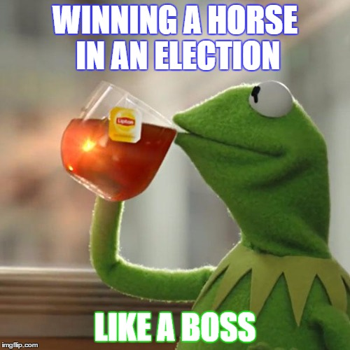 But Thats None Of My Business Meme | WINNING A HORSE IN AN ELECTION LIKE A BOSS | image tagged in memes,but thats none of my business,kermit the frog | made w/ Imgflip meme maker