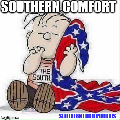 southern comfort | SOUTHERN COMFORT SOUTHERN FRIED POLITICS | image tagged in southern flag,confederate flag,confederate,southern fried politics | made w/ Imgflip meme maker