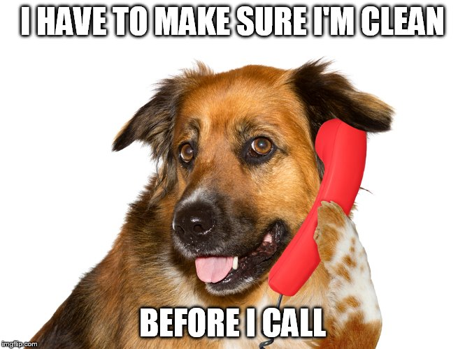 Dog On The Phone | I HAVE TO MAKE SURE I'M CLEAN BEFORE I CALL | image tagged in dog on the phone | made w/ Imgflip meme maker