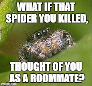 Misunderstood Spider | WHAT IF THAT SPIDER YOU KILLED, THOUGHT OF YOU AS A ROOMMATE? | image tagged in misunderstood spider | made w/ Imgflip meme maker