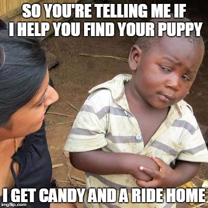 Third World Skeptical Kid Meme | SO YOU'RE TELLING ME IF I HELP YOU FIND YOUR PUPPY I GET CANDY AND A RIDE HOME | image tagged in memes,third world skeptical kid | made w/ Imgflip meme maker