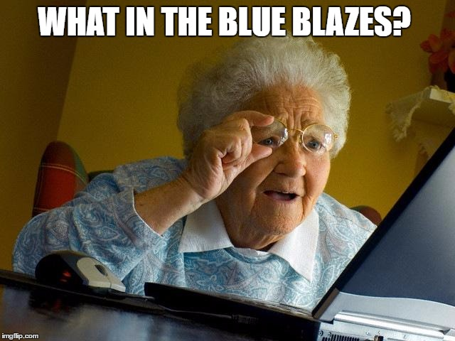 Grandma Finds The Internet Meme | WHAT IN THE BLUE BLAZES? | image tagged in memes,grandma finds the internet | made w/ Imgflip meme maker