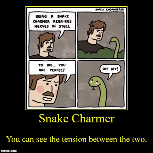 I Feel Like This Could Be Taken Farther... | Snake Charmer | You can see the tension between the two. | image tagged in funny,demotivationals,snake,snake charmer,tension,sexual | made w/ Imgflip demotivational maker