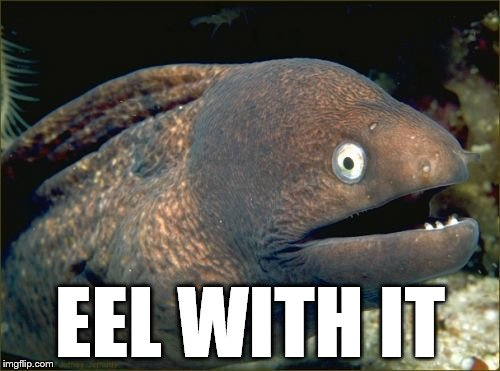 Bad Joke Eel Meme | EEL WITH IT | image tagged in memes,bad joke eel | made w/ Imgflip meme maker