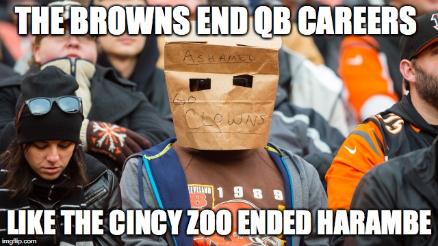 Browns | THE BROWNS END QB CAREERS LIKE THE CINCY ZOO ENDED HARAMBE | image tagged in browns,harambe | made w/ Imgflip meme maker