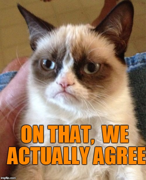 Grumpy Cat Meme | ON THAT,  WE ACTUALLY AGREE | image tagged in memes,grumpy cat | made w/ Imgflip meme maker
