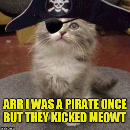 BUT THEY KICKED MEOWT ARR I WAS A PIRATE ONCE | made w/ Imgflip meme maker
