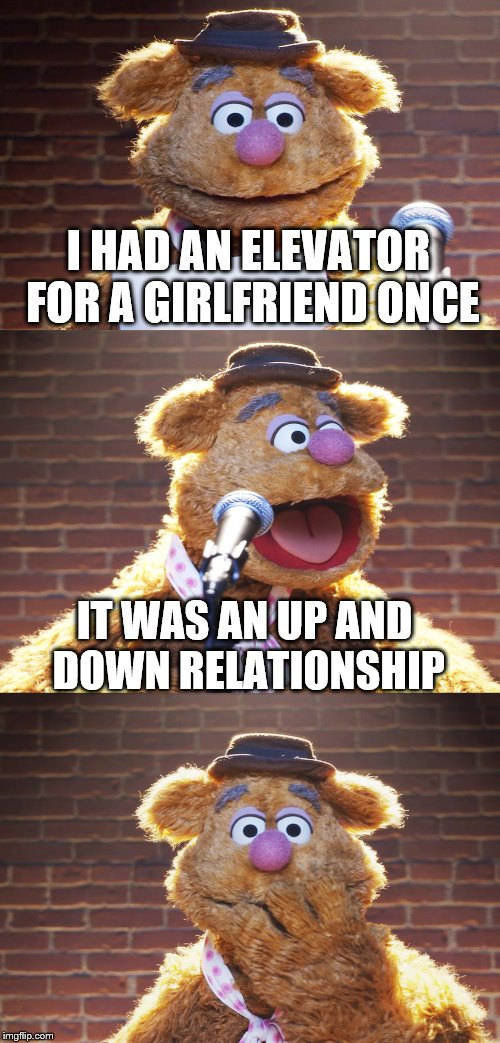 Fozzie Jokes | I HAD AN ELEVATOR FOR A GIRLFRIEND ONCE IT WAS AN UP AND DOWN RELATIONSHIP | image tagged in fozzie jokes,memes,inferno390 | made w/ Imgflip meme maker