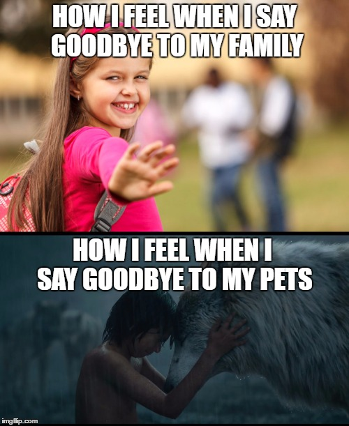 Emotional goodbye to pets | HOW I FEEL WHEN I SAY GOODBYE TO MY FAMILY HOW I FEEL WHEN I SAY GOODBYE TO MY PETS | image tagged in saying goodbye,family,pets,mowgli,wolf,memes | made w/ Imgflip meme maker