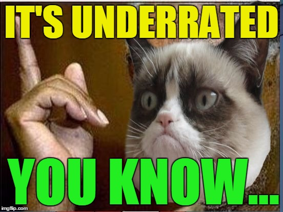 Grumpy Cat He's Right You Know | IT'S UNDERRATED YOU KNOW... | image tagged in grumpy cat he's right you know | made w/ Imgflip meme maker