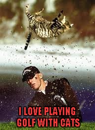 I LOVE PLAYING GOLF WITH CATS | made w/ Imgflip meme maker