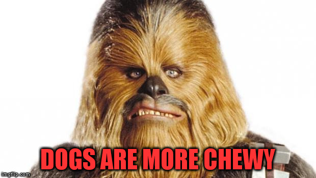 DOGS ARE MORE CHEWY | made w/ Imgflip meme maker