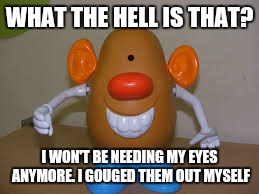 WHAT THE HELL IS THAT? I WON'T BE NEEDING MY EYES ANYMORE. I GOUGED THEM OUT MYSELF | made w/ Imgflip meme maker