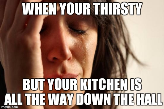 First World Problems Meme |  WHEN YOUR THIRSTY; BUT YOUR KITCHEN IS ALL THE WAY DOWN THE HALL | image tagged in memes,first world problems | made w/ Imgflip meme maker