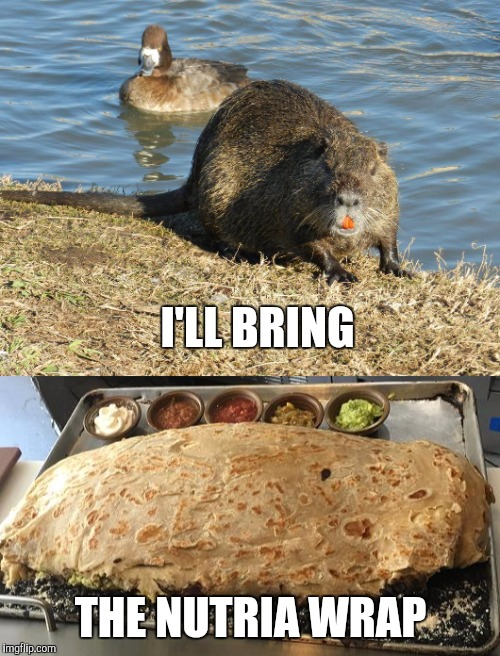 I'LL BRING THE NUTRIA WRAP | made w/ Imgflip meme maker