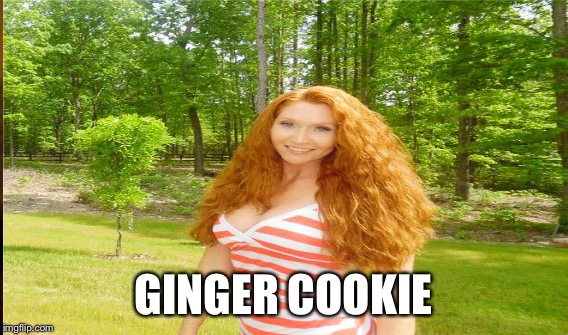 GINGER COOKIE | made w/ Imgflip meme maker