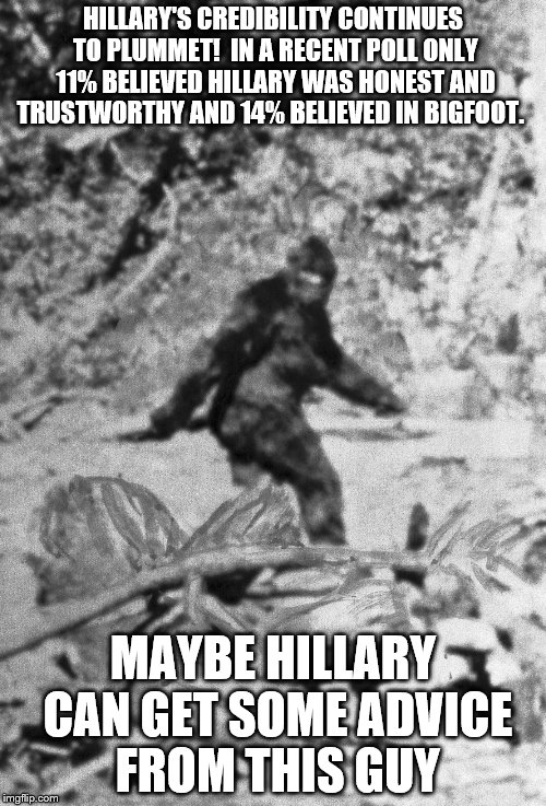 Hillary's Credibility 3 | HILLARY'S CREDIBILITY CONTINUES TO PLUMMET!  IN A RECENT POLL ONLY 11% BELIEVED HILLARY WAS HONEST AND TRUSTWORTHY AND 14% BELIEVED IN BIGFO | image tagged in hillary clinton,bigfoot,poll,funny,dishonest,credibility | made w/ Imgflip meme maker