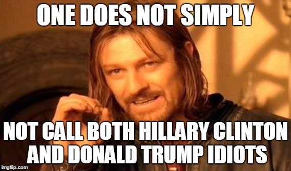 One Does Not Simply Meme | ONE DOES NOT SIMPLY NOT CALL BOTH HILLARY CLINTON AND DONALD TRUMP IDIOTS | image tagged in memes,one does not simply | made w/ Imgflip meme maker