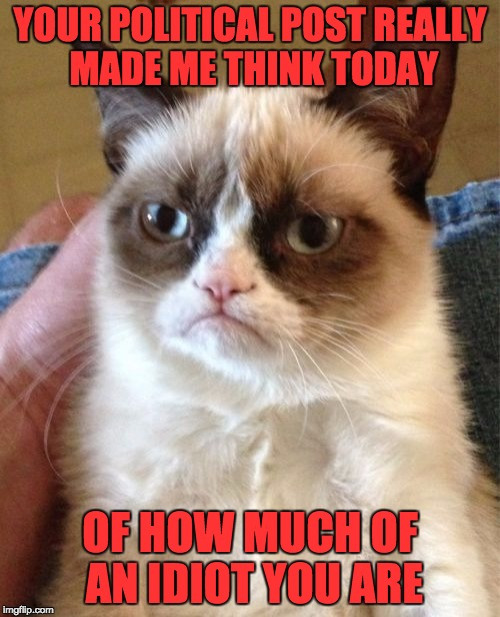 This is what really happens when someone replies to a political meme =I | YOUR POLITICAL POST REALLY MADE ME THINK TODAY OF HOW MUCH OF AN IDIOT YOU ARE | image tagged in memes,grumpy cat | made w/ Imgflip meme maker