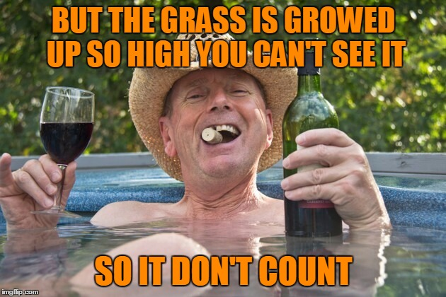 BUT THE GRASS IS GROWED UP SO HIGH YOU CAN'T SEE IT SO IT DON'T COUNT | made w/ Imgflip meme maker