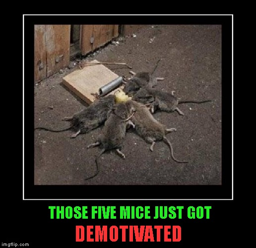 Sometimes teamwork doesn't work either... | THOSE FIVE MICE JUST GOT DEMOTIVATED | image tagged in teamwork,memes,demotivational,funny,demotivational week,animals | made w/ Imgflip meme maker
