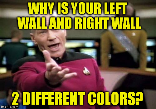 Picard Wtf Meme | WHY IS YOUR LEFT WALL AND RIGHT WALL 2 DIFFERENT COLORS? | image tagged in memes,picard wtf | made w/ Imgflip meme maker