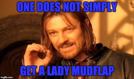 One Does Not Simply Meme | ONE DOES NOT SIMPLY GET A LADY MUDFLAP | image tagged in memes,one does not simply | made w/ Imgflip meme maker