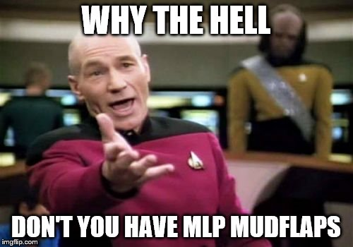 Picard Wtf Meme | WHY THE HELL DON'T YOU HAVE MLP MUDFLAPS | image tagged in memes,picard wtf | made w/ Imgflip meme maker