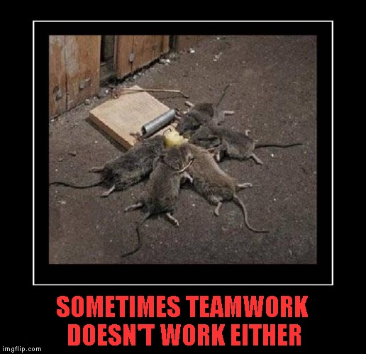 Those 5 mice just got demotivated!!! | SOMETIMES TEAMWORK DOESN'T WORK EITHER | image tagged in teamwork,memes,demotivational week,funny,animals,demotivational | made w/ Imgflip meme maker