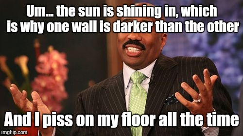 Steve Harvey Meme | Um... the sun is shining in, which is why one wall is darker than the other And I piss on my floor all the time | image tagged in memes,steve harvey | made w/ Imgflip meme maker
