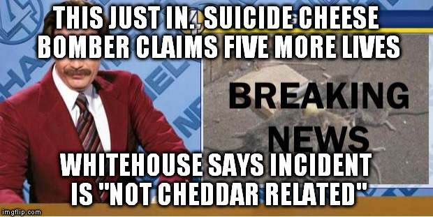 "THIS JUST IN.  SUICIDE CHEESE BOMBER CLAIMS FIVE MORE LIVES WHITEHOUSE SAYS INCIDENT IS ""NOT CHEDDAR RELATED"" 