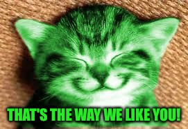 happy RayCat | THAT'S THE WAY WE LIKE YOU! | image tagged in happy raycat | made w/ Imgflip meme maker