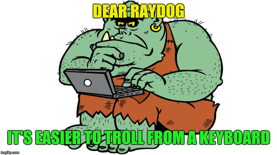Troll | DEAR RAYDOG IT'S EASIER TO TROLL FROM A KEYBOARD | image tagged in troll | made w/ Imgflip meme maker