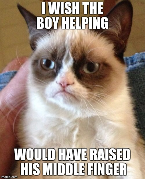Grumpy Cat Meme | I WISH THE BOY HELPING WOULD HAVE RAISED HIS MIDDLE FINGER | image tagged in memes,grumpy cat | made w/ Imgflip meme maker