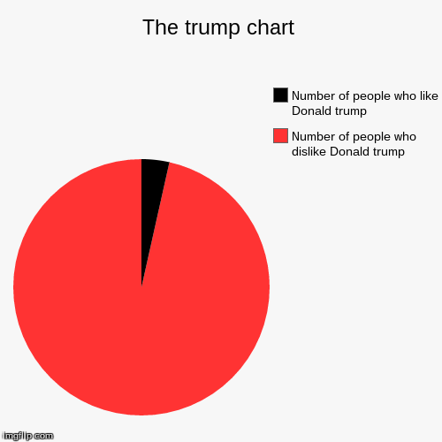 Donald trump chart | The trump chart | Number of people who dislike Donald trump, Number of people who like Donald trump | image tagged in funny,pie charts | made w/ Imgflip chart maker