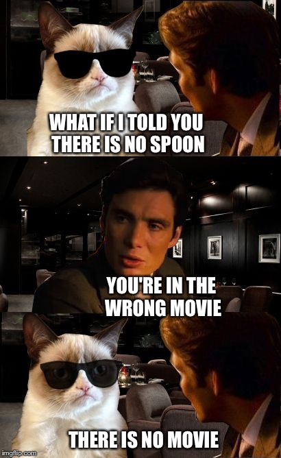 Leonine D'Catrio stands in for morefish in the wrong movie | WHAT IF I TOLD YOU THERE IS NO SPOON THERE IS NO MOVIE YOU'RE IN THE WRONG MOVIE | image tagged in inception gc 2,matrix morpheus,grumpy cat,inception | made w/ Imgflip meme maker