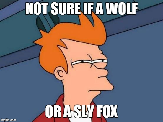 Futurama Fry Meme | NOT SURE IF A WOLF OR A SLY FOX | image tagged in memes,futurama fry | made w/ Imgflip meme maker