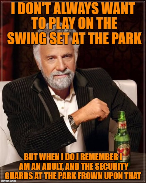 The Most Interesting Man In The World Meme | I DON'T ALWAYS WANT TO PLAY ON THE SWING SET AT THE PARK BUT WHEN I DO I REMEMBER I AM AN ADULT, AND THE SECURITY GUARDS AT THE PARK FROWN U | image tagged in memes,the most interesting man in the world | made w/ Imgflip meme maker