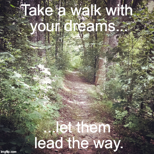 Take a walk  | Take a walk with your dreams... ...let them lead the way. | image tagged in nature,inspirational quote,trail,woods,meme | made w/ Imgflip meme maker