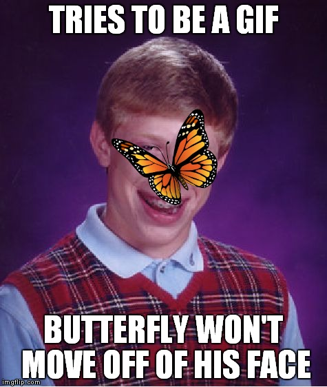 Bad Luck Brian Meme | TRIES TO BE A GIF BUTTERFLY WON'T MOVE OFF OF HIS FACE | image tagged in memes,bad luck brian | made w/ Imgflip meme maker