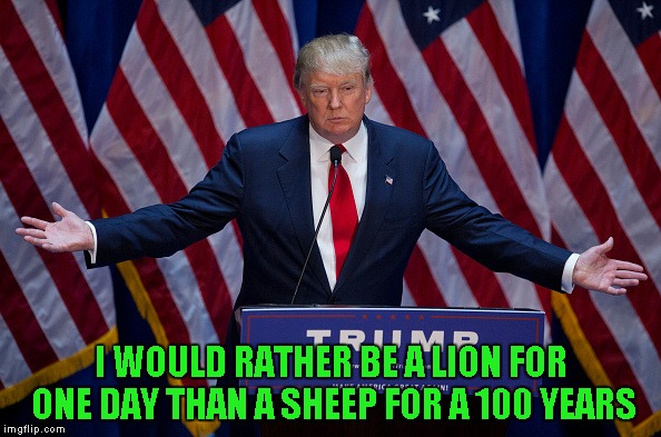 One of Donald's quotes that I actually like and agree with. | I WOULD RATHER BE A LION FOR ONE DAY THAN A SHEEP FOR A 100 YEARS | image tagged in donald trump,memes,quotes,truth,trump | made w/ Imgflip meme maker