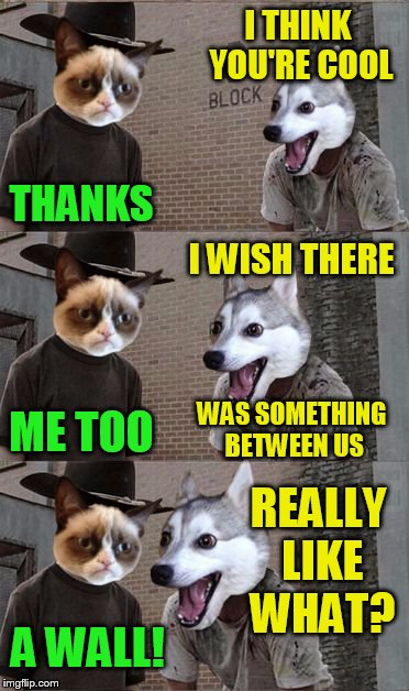 Grumpy Cat and Bad Pun Dog | I THINK YOU'RE COOL THANKS I WISH THERE WAS SOMETHING BETWEEN US ME TOO REALLY LIKE WHAT? A WALL! | image tagged in grumpy cat and bad pun dog,funny meme,wall,jokes,laughs | made w/ Imgflip meme maker